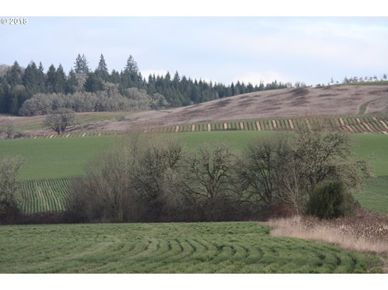 21800 Sw Latham Rd , Mcminnville, OR - USA (photo 3)