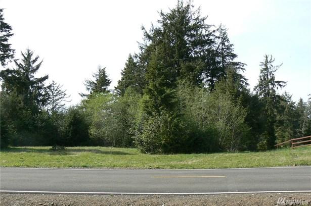 Lot 14 Willapa Bay Estates , South Bend, WA - USA (photo 2)