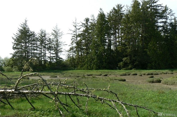 Lot 14 Willapa Bay Estates , South Bend, WA - USA (photo 3)