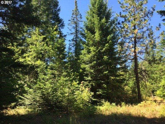 Mountain Pine Rd  1, Lyle, WA - USA (photo 1)