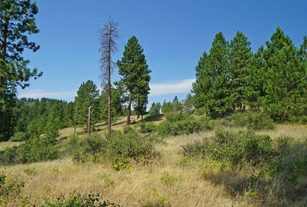 10406 E Grouse Mountain Ln , Spokane, WA - USA (photo 2)