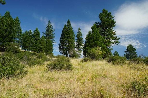 10406 E Grouse Mountain Ln , Spokane, WA - USA (photo 4)