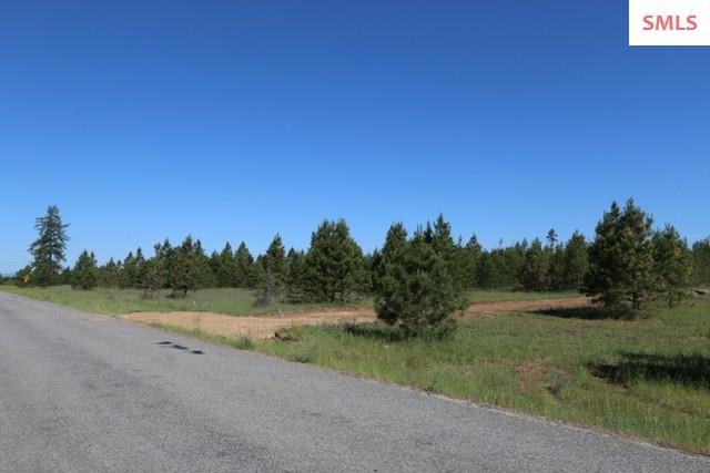 Lot N James Way , Oldtown, ID - USA (photo 3)