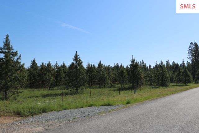 Lot N James Way , Oldtown, ID - USA (photo 4)