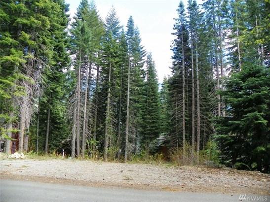 150 Mountain Home Lane , Easton, WA - USA (photo 4)