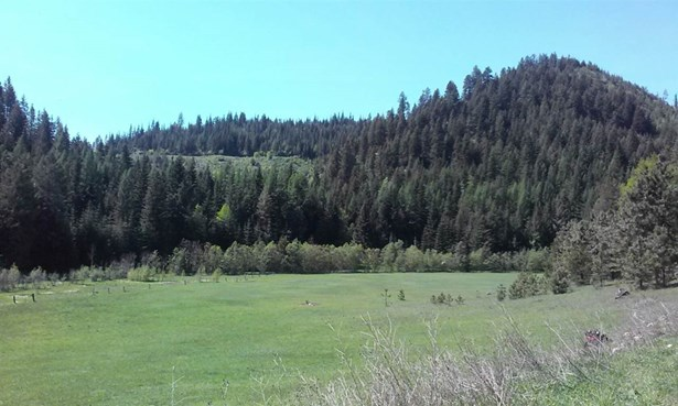 Nna Bodie Canyon Rd , Priest River, ID - USA (photo 1)