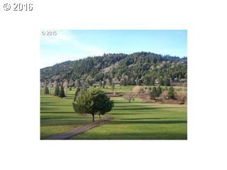 Bugle Loop  Lot62, Oakridge, OR - USA (photo 5)
