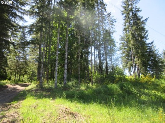 Timber Rd , Vernonia, OR - USA (photo 1)