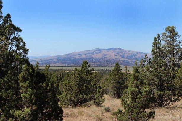 23600 Southeast Salt Creek , Prineville, OR - USA (photo 4)