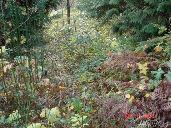 9.21 Acres On Olhava Wy Nw , Poulsbo, WA - USA (photo 5)