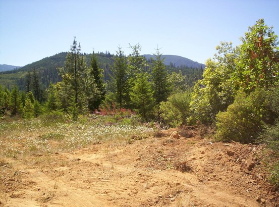 0 French Peak Rd , Cave Junction, OR - USA (photo 2)