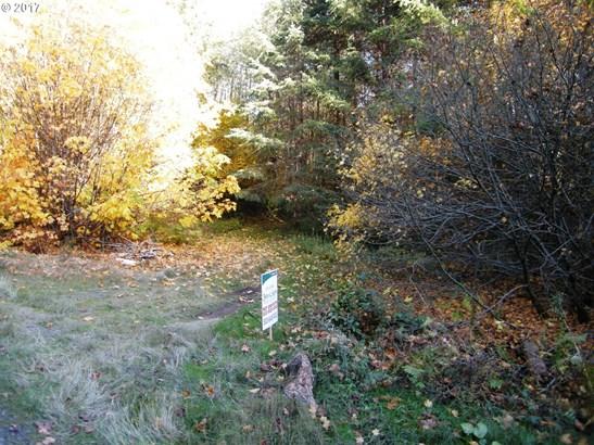 0 Nw Pumpkin Ridge Rd , North Plains, OR - USA (photo 1)