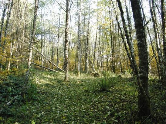 0 Nw Pumpkin Ridge Rd , North Plains, OR - USA (photo 4)