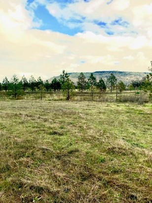 3301 Tresham Ln , Central Point, OR - USA (photo 5)