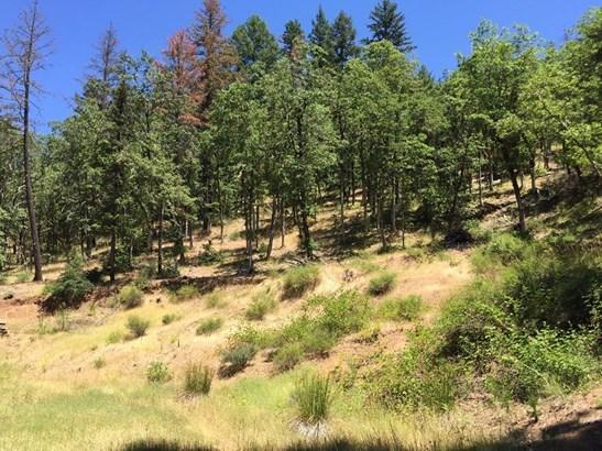 0 E Trail Creek Rd , Trail, OR - USA (photo 4)