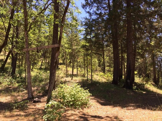 0 E Trail Creek Rd , Trail, OR - USA (photo 5)