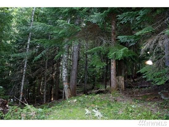 270 Mountain Home Lane , Easton, WA - USA (photo 5)