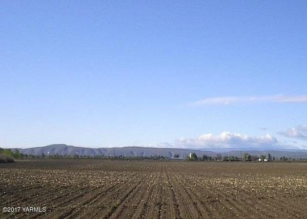 2451 E Branch Rd , Toppenish, WA - USA (photo 1)