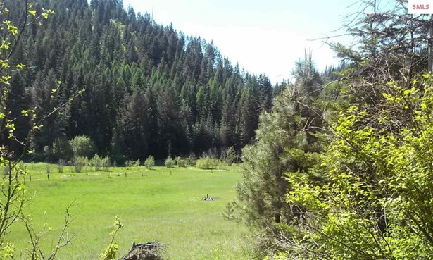 Nna Bodie Canyon , Priest River, ID - USA (photo 3)