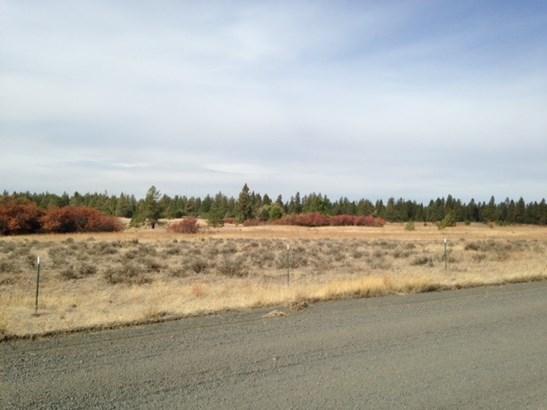 Xxx Long Rd. Lot 10 (111123.9054) Rd , Cheney, WA - USA (photo 3)