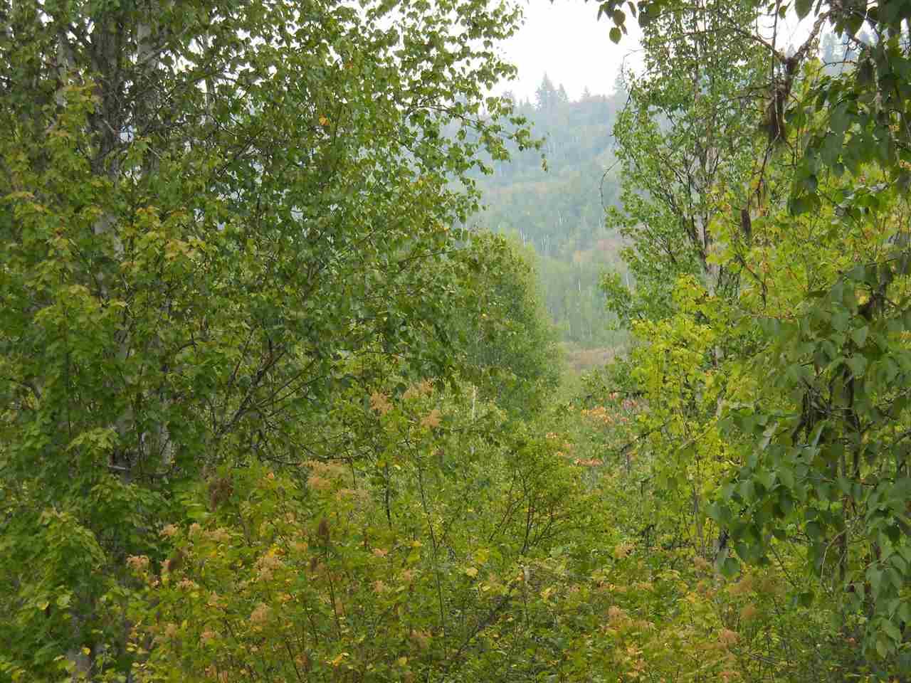 1163 & 1117 Catamount Ridge Ln , Cusick, WA - USA (photo 1)