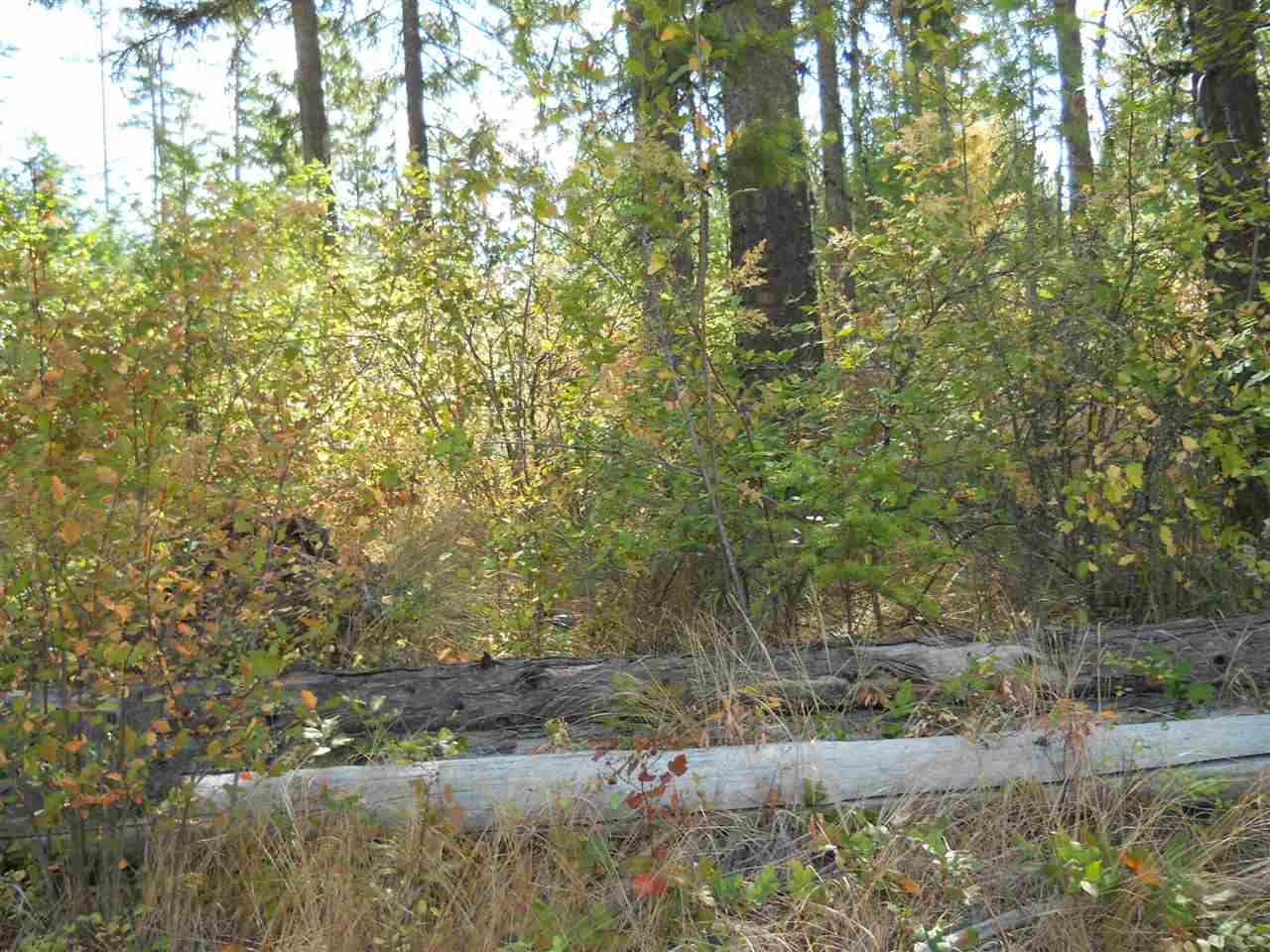 1163 & 1117 Catamount Ridge Ln , Cusick, WA - USA (photo 5)