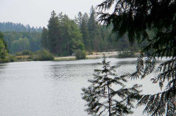 Lot 53 Davis Lake Rd , Usk, WA - USA (photo 3)
