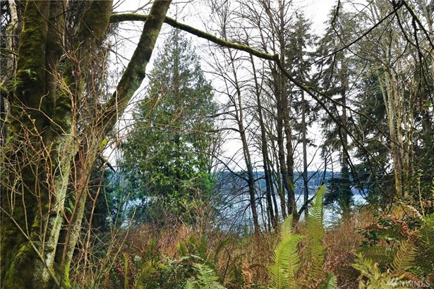 230 Xx Raymond Rd Sw , Vashon, WA - USA (photo 3)