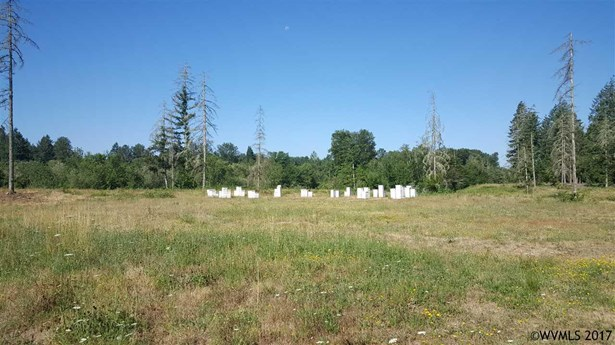 42688 N River (next To) Rd , Sweet Home, OR - USA (photo 1)