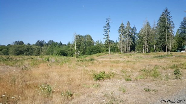 42688 N River (next To) Rd , Sweet Home, OR - USA (photo 4)