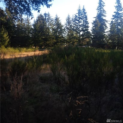 19120 B St E , Spanaway, WA - USA (photo 4)