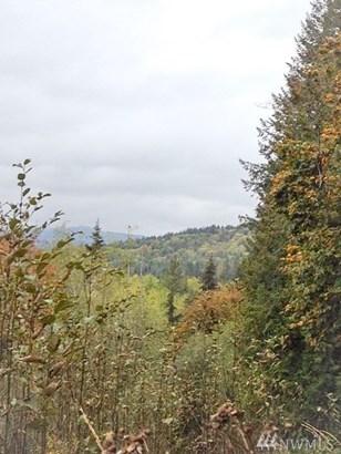140 Lost Creek Lane , Onalaska, WA - USA (photo 3)