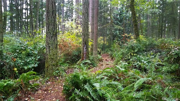 236 Xx Landers Rd Sw , Vashon, WA - USA (photo 5)