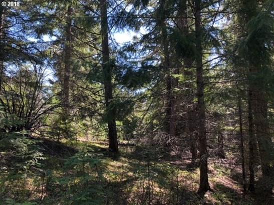 Forest Ln  3, Lyle, WA - USA (photo 2)
