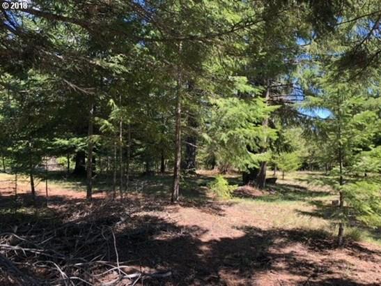 Forest Ln  3, Lyle, WA - USA (photo 3)