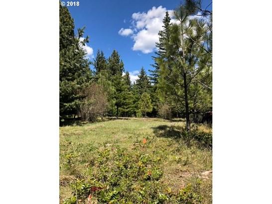 Forest Ln  3, Lyle, WA - USA (photo 5)