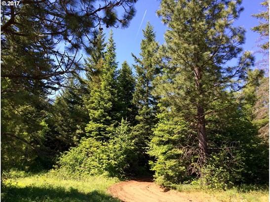 Mountain Pine Rd  7, Lyle, WA - USA (photo 2)