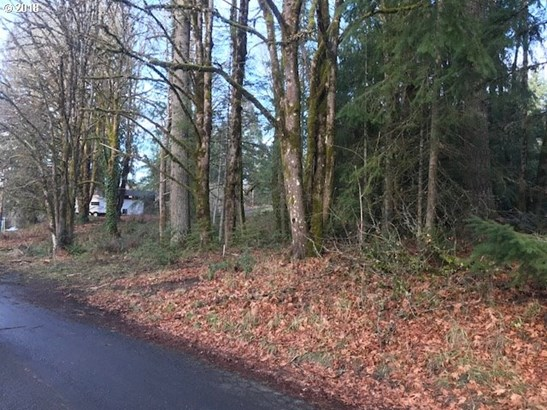Lincoln Ave , Vernonia, OR - USA (photo 4)