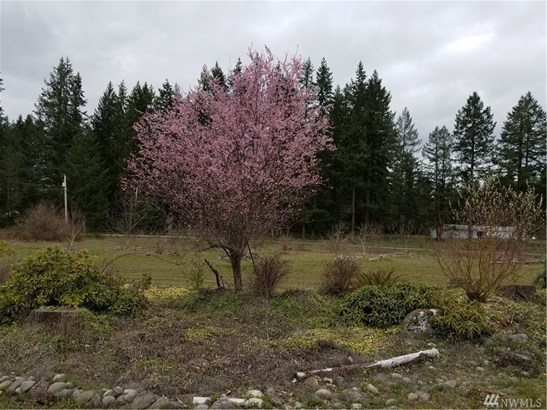 31615 84th Ave S , Roy, WA - USA (photo 3)