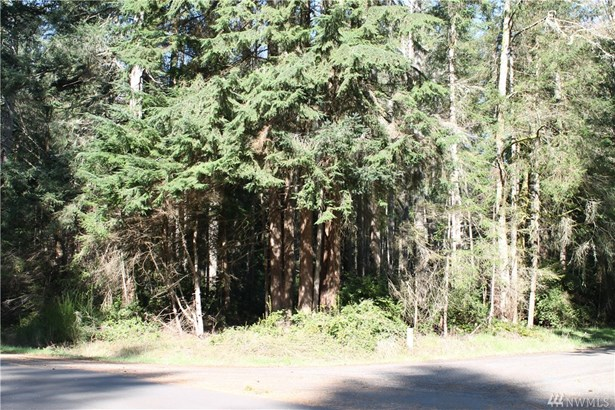 11205 Leschi Circle , Anderson Island, WA - USA (photo 1)