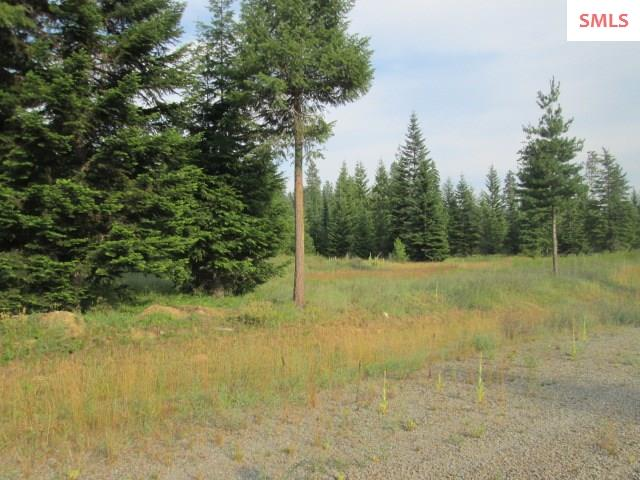 Lot 8 Douglas Clan Rd , Priest River, ID - USA (photo 3)