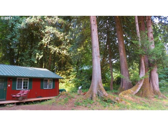 9864 Beach Dr , Birkenfeld, OR - USA (photo 2)
