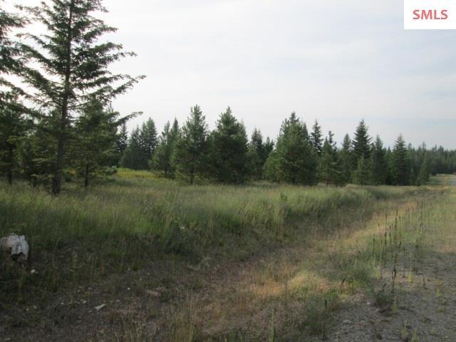 Lot 2 Douglas Clan Rd , Priest River, ID - USA (photo 2)