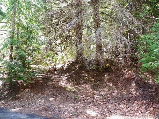 Lot58-59 Mountain Home Lane , Easton, WA - USA (photo 1)