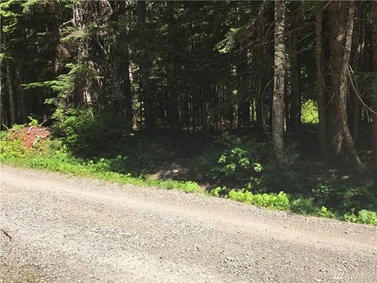 83 Chikamin Peak Rd , Snoqualmie Pass, WA - USA (photo 3)