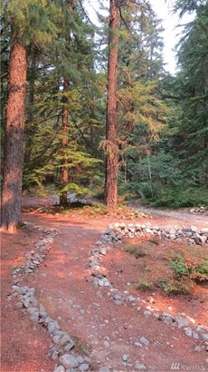 61 Fs Rd 4832-3961 , Snoqualmie Pass, WA - USA (photo 3)