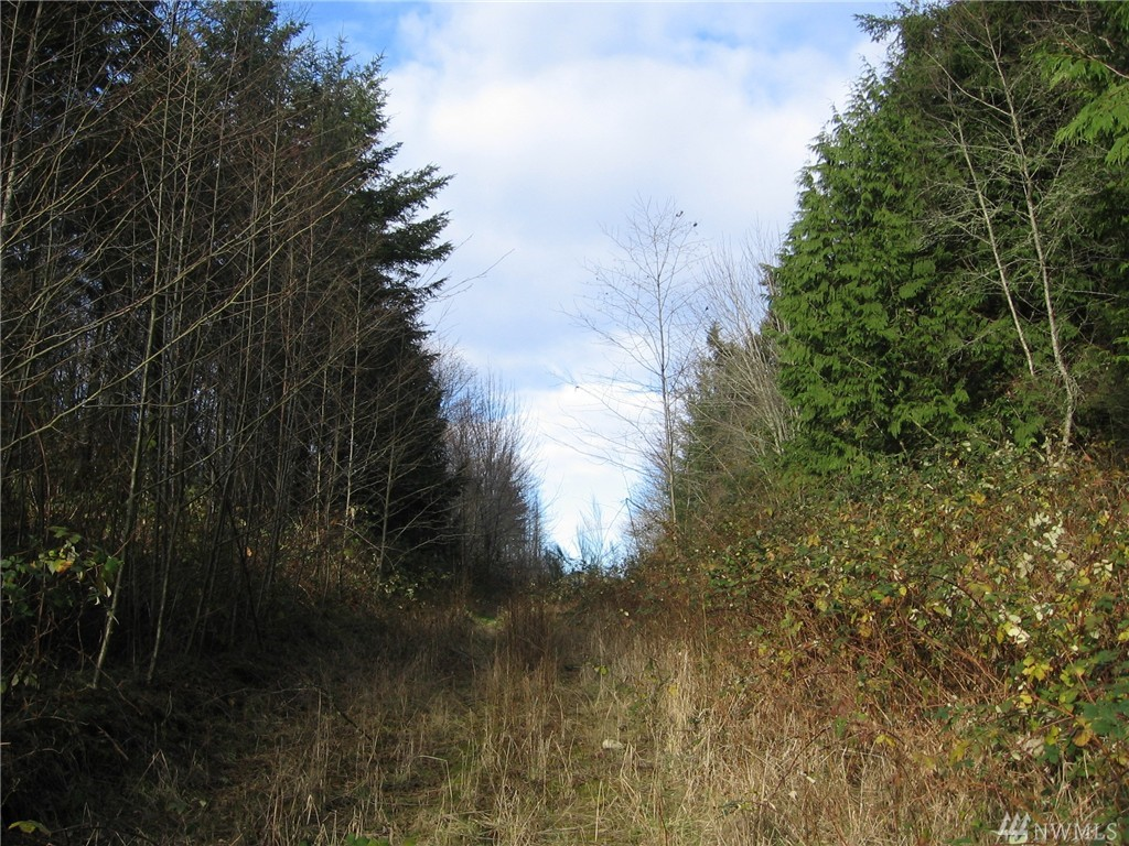 9100 Ne Nature Wy , Kingston, WA - USA (photo 4)
