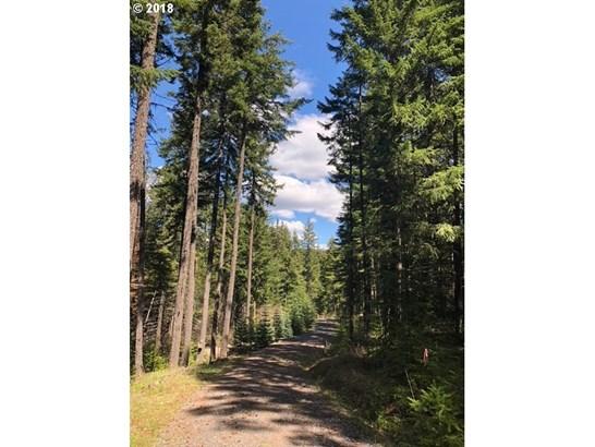 Forest Path  1, Lyle, WA - USA (photo 1)
