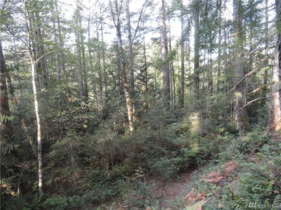 449 Lewis Rd W , Seabeck, WA - USA (photo 3)