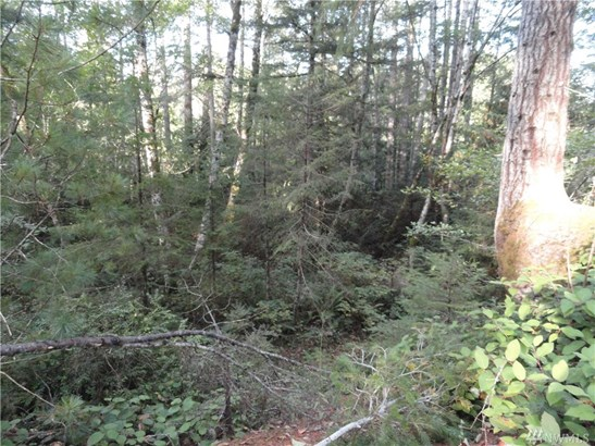 449 Lewis Rd W , Seabeck, WA - USA (photo 4)